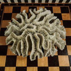 Stor antik pude-koral