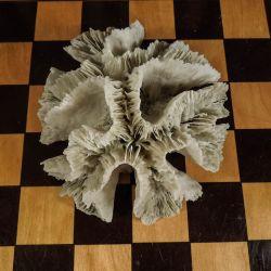 Antik pude-koral