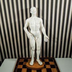 Vintage Akupunktur-mand på fod af træ!